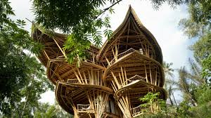 Bamboo for Construction Innovations
