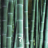 What Products Are Made From Bamboo?